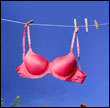 pink bra on clothes line